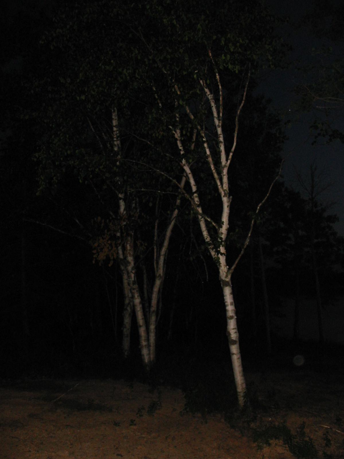 20080712091