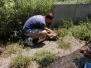 Feline Rescue Center